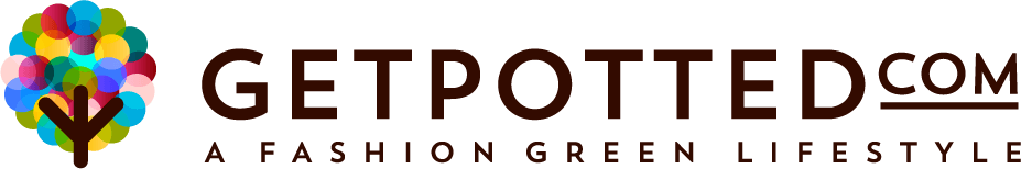 GetPotted.com increases revenue seven-fold using Bidnamic's Targeted Search Term algorithm test : Bidnamic